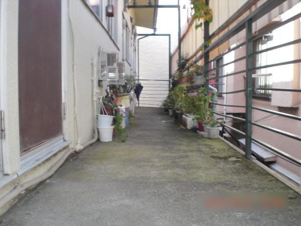 苔の生えた廊下のモルタル面